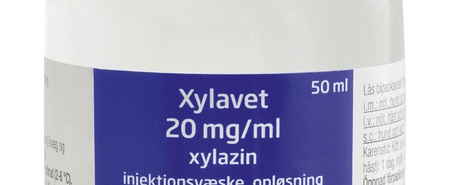 Xylavet 20 mg_ml_50ml#14C58